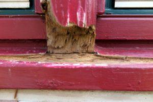 Fenster und Türen lackieren